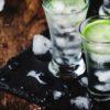 Einfache aber gute Gin Getränke Rezepte