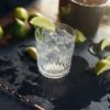 Gin Probiersets – Die kerative Geschenkidee