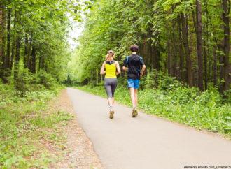 5 Argumente, warum Sie Ausdauertraining in jeden Trainingsplan einbauen sollten