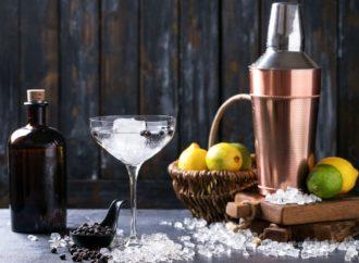 5 beliebte Gin Cocktails und dessen Rezepte